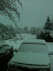 SNOWING NEAR PHILOMATH