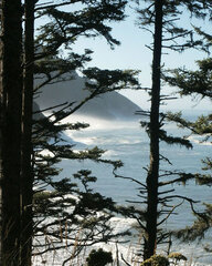 From Heceta Head
