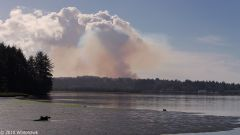 Smoke in Coos Bay