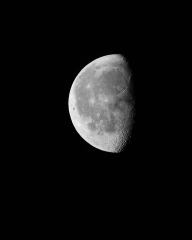Half moon - shot with 100-400mm Canon