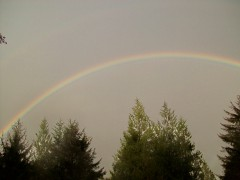 Full Ranibow in Front of my House.