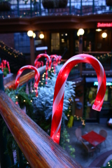 Candy Canes at 5th St Market