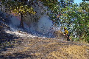 Crews respond to pair of wildfires in Douglas County