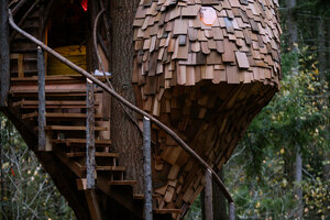 Check out this honeycomb treehouse