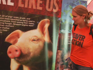 PETA @ OSU: 'It just made me sick to see the pictures'