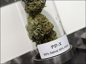 Lawmakers look to limit size of medical marijuana grows in Oregon