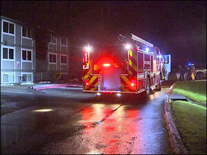 Woman killed in fire, neighbor burned in rescue attempt