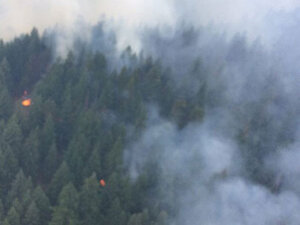 New fires on Umpqua NF dubbed Potter Mountain Complex