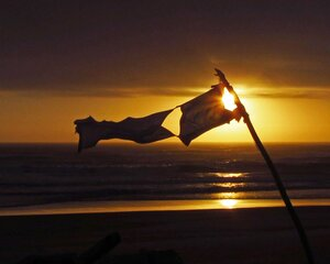 Driftwood Fort and Flag Sunset