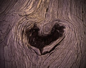 Wood U B My Valentine?