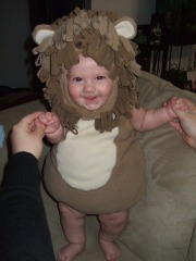 Baby lion on the loose!