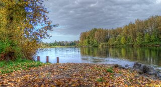 Willamette River in Autumn