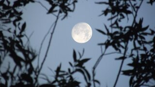 June 21, 2013 SUMMER's 1st FULL MOON