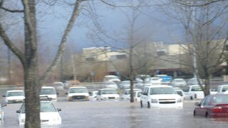 Salem DMV and State cars under water!!!!
