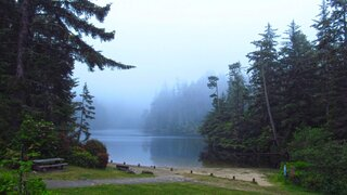 Foggy Lake Marie