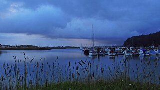 Stormy Harbor Blues