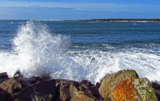 Pretty Wave Action in Winchester Bay