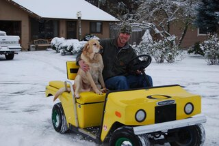 Yellow lab love to ride.