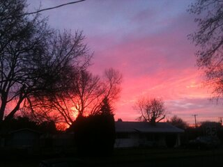 FW: This morning outside my house from Nick Strassburg.