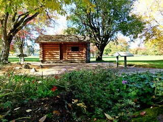 Cabin In The Park