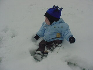 8 Month Old Paul Playing In His 1st Snow