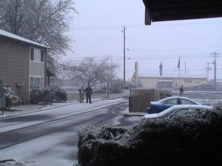 snow in roseburg!