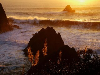 Winter Waves on Oregon's Coast