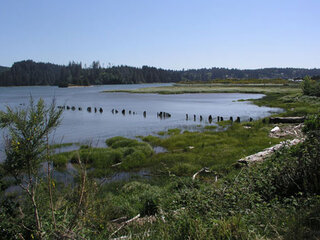 Siuslaw River Estuary