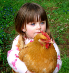 Carya loves her chickens