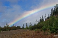 Noonday Ridge Rainbow