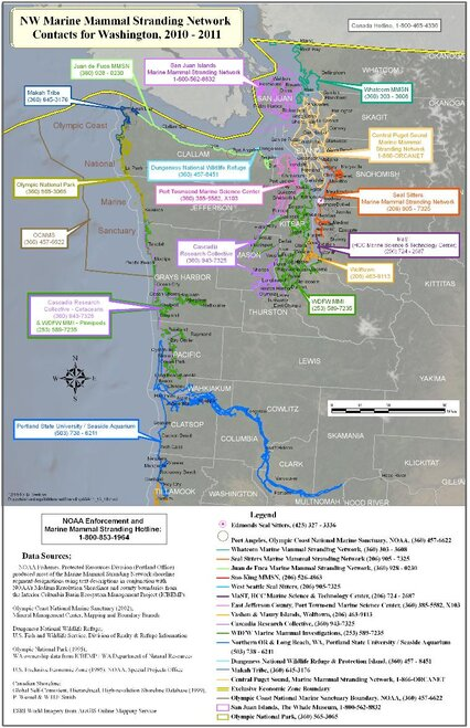 Washington stranding map