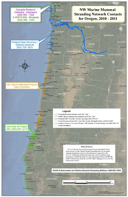 Oregon stranding map