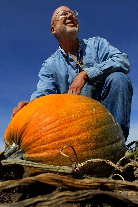 Food and Farm Pumpkins