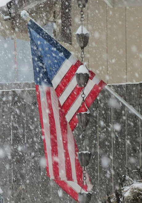 Flag in snow February 7