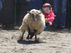 Rodeo Fun for Kids
