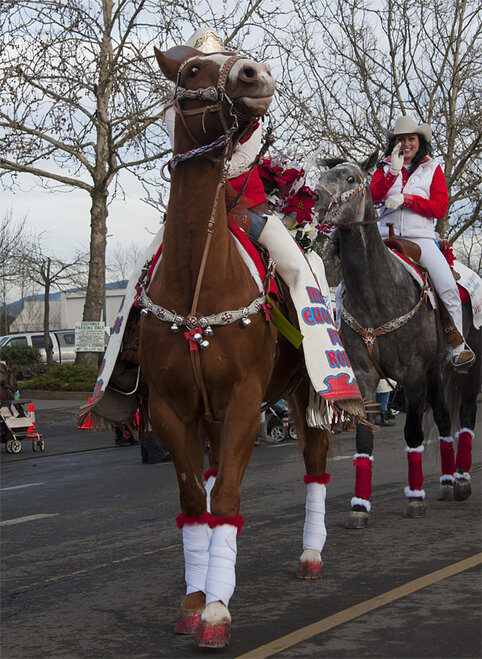61st annual Springfield Christmas Parade - 06 - Photo by Tristan Fortsch