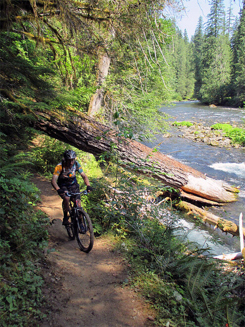 OUTDOORS-MOUNTAIN BIKING-MCKENZIE RIVER TRAIL