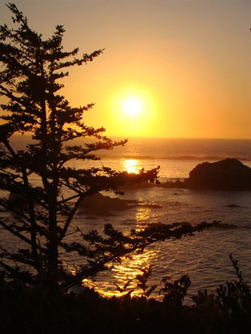 Cape Arago on September 12 by Eric Kohler (4)