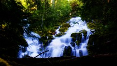 proxy falls in mid july