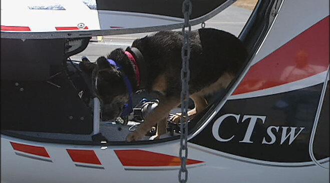 Maggie's 'Pilots 'n Paws' Flight