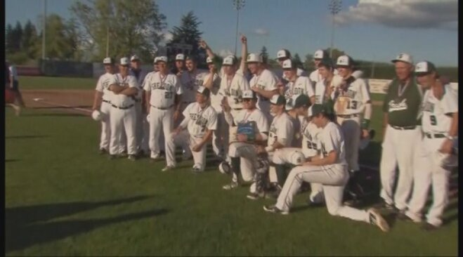 Video: Irish celebrate title with cream pies