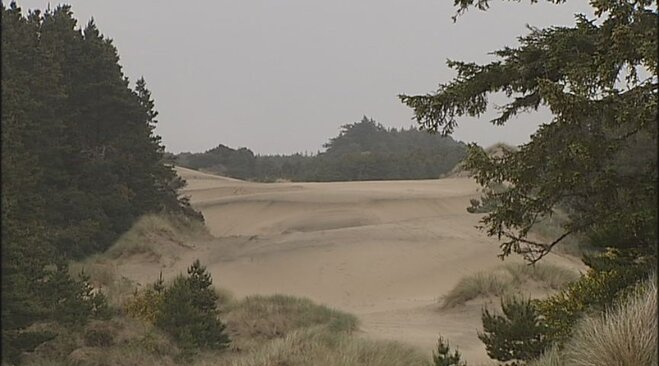 Prospecting on Oregon Coast sparks concerns