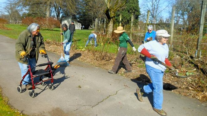 Volunteers help tend Owen Rose Garden in Eugene (7)