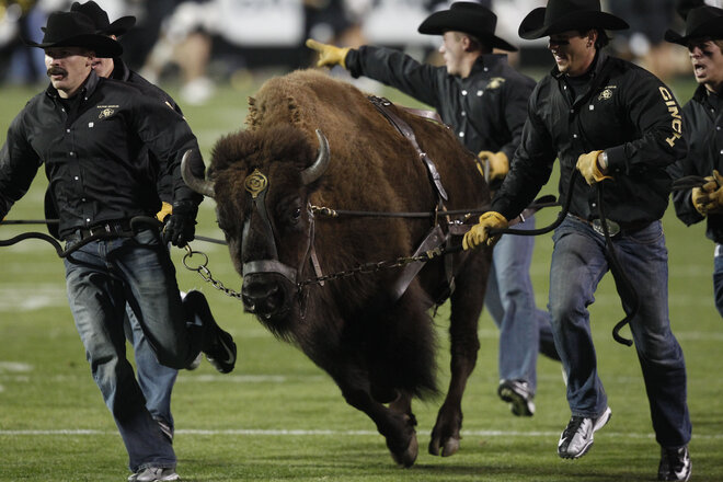 Buffaloes vs. Ducks: Set for noon kickoff