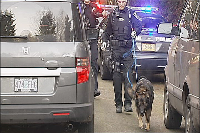 Police dog on scene