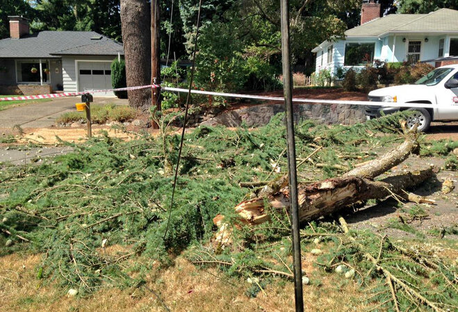 PHOTOS: High winds hit Oregon coast and Willamette Valley