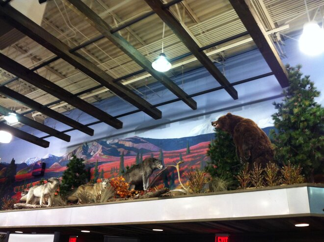 Union Gap Cabela's Outpost