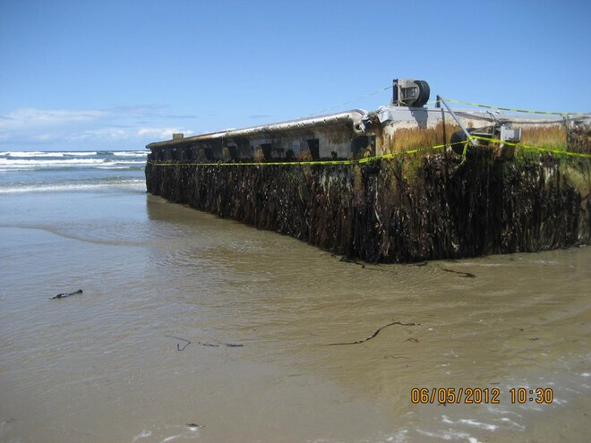 John Stork photo of dock that washed ashore on Agate Beach (3)