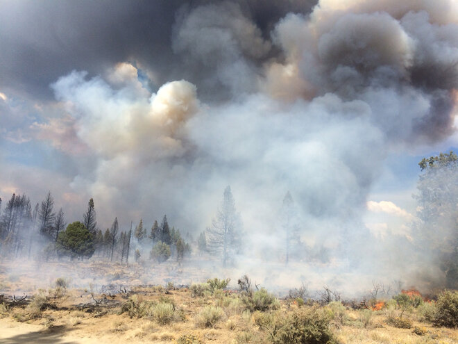 Mandatory evacuation lifted as crews fight Moccasin Hill Fire