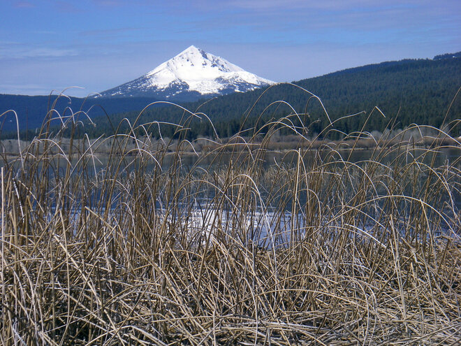 Mt. McLoughlin from Upper Klamath Lake - Shelley Snow